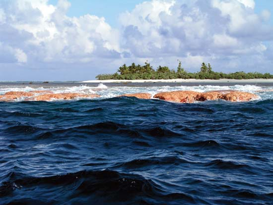 Rose Atoll Shoreline